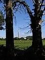 Field between Eaglehurst and Hillhead - geograph.org.uk - 515206.jpg