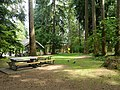 Field in Queens Park, New Westminster - panoramio.jpg