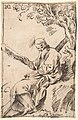 Figure of St. Andrew seated in a Landscape MET DP800115.jpg