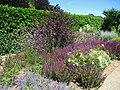 Filoli gardens - IMG 9315.JPG