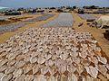 Fish market - panoramio (3).jpg