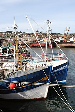 Fishing boats in Newlyn Harbour - geograph.org.uk - 772907