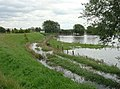 Flood defences at Newington - geograph.org.uk - 503621.jpg