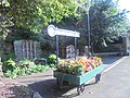 Flower barrow at Knaresborough railway station (24th August 2019).jpg