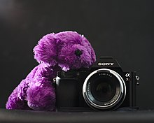 Fluffy purple puppy plushie self portrait.jpg