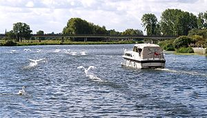 Follow That Boat - Flickr - mick - Lumix.jpg