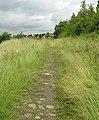 Footpath around Round Hill - geograph.org.uk - 473064.jpg