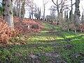 Footpath climbing through the grounds of Wakehurst Place - geograph.org.uk - 1622262.jpg