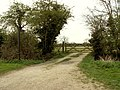 Footpath from Panfield to Bocking - geograph.org.uk - 399080.jpg