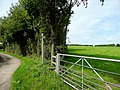 Footpath to Redinhorne - geograph.org.uk - 1431702.jpg