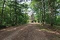 Forêt domaniale de Bois-d'Arcy 54.jpg