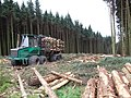 Forestry Equipment at Linn Moss - geograph.org.uk - 542294.jpg