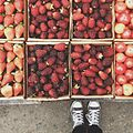 Fresas y moras en la Colonia Tovar.JPG
