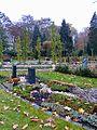 Friedhof Melaten Bestattungsgärten Flur 94 3.jpg
