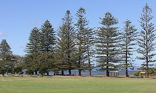 Cleveland, Queensland Suburb of Redland City, Queensland, Australia