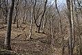 G. Goryachiy Klyuch, Krasnodarskiy kray, Russia - panoramio (2).jpg