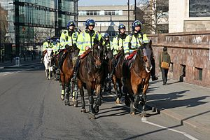 Death of Ian Tomlinson - Mounted police during the 2009 protests