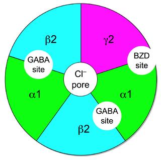 GABA<sub>A</sub> receptor positive allosteric modulator