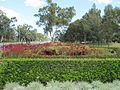 GE Hwy 0009 W Burswood Bolton Av median.jpg