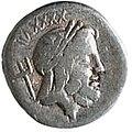 Gaius asinius.jpg