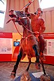 Gallo-Romeinse cavalerist26-09-2008 16-07-55.JPG
