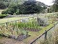 Garden, Penny Holme - geograph.org.uk - 214968.jpg