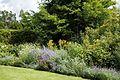 Garden border at Goodnestone Park Kent England 2.jpg