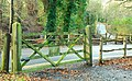 Gate, Crawfordsburn Country Park - geograph.org.uk - 1160020.jpg