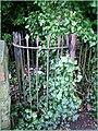 Gate (471715818).jpg