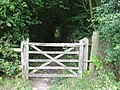 Gateway to tunnel of trees - geograph.org.uk - 1425737.jpg