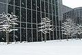 Geneve Sous la neige - 2013 - panoramio (54).jpg