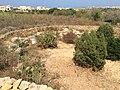 Ggantija, Gozo 90.jpg