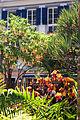Gibraltar law courts garden 2.jpg