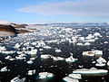Glaciers and Icebergs at Cape York edit 4.jpg