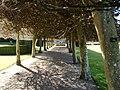 Glamis Castle Italian Garden - geograph.org.uk - 401078.jpg