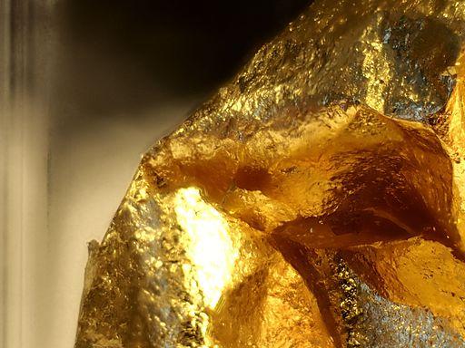 Gold Leaf Close Up