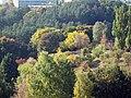 Golden Fall in Kiev 21 - panoramio.jpg