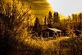 Golden Hour Moncton (22715058904).jpg