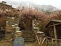 Gongbo'gyamda, Nyingchi, Tibet, China - panoramio (8).jpg