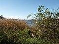 Gränsö - panoramio.jpg