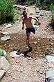 Grand Canyon 00642 n 7ab88k78v220 (2540069749).jpg