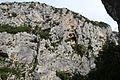 Grand Canyon Verdon Rougon 67.jpg