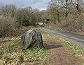Granite boulder along Newtown Linford Lane - geograph.org.uk - 1195748.jpg
