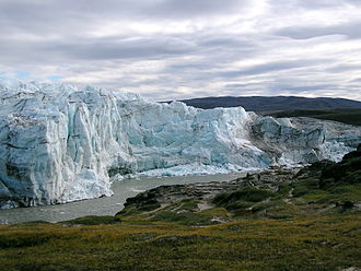 Oldest Dryas - The edge of the ice in Greenland