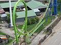 Greezed Lightnin at Six Flags Kentucky Kingdom 11.jpg