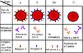 Grupos sanguineos AB O A B.PNG