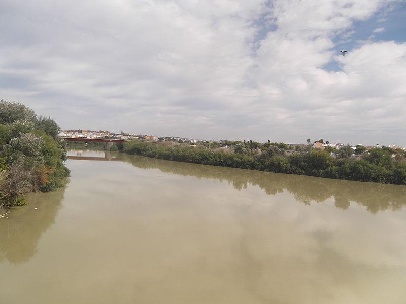 ملف:Guadalquivir in Córdoba001.JPG