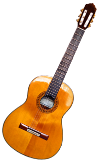 Guitar fretted string instrument