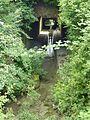 Gundelsheim Anbach letzte Meter.jpg