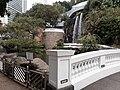 HK ML 半山區 Mid-levels 堅尼地道 Kennedy Road 香港公園 Hong Kong Park flora green leaves February 2020 SS2 05.jpg
